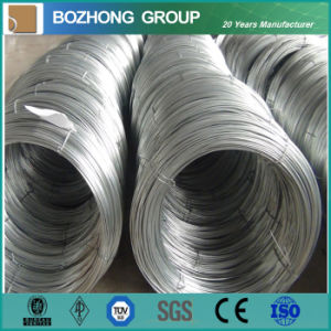 High Tensile Strength Galvanized Steel Wire pictures & photos