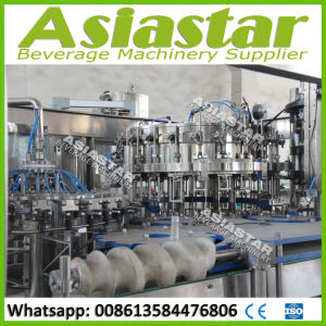Fully Automatic Glass Bottle Beer Washer Filler Capper Production Plant pictures & photos