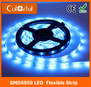 Hot DC12V SMD5050 LED Light Strip Waterproof pictures & photos