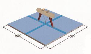 Hot Sale 4000*4000mm Gymnastics Mat for Pommel Horse pictures & photos