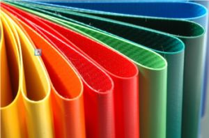 PVC Tarpaulin with B1 in Different Colors pictures & photos