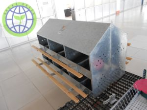 Chicken Use Manual 24 Holes Nest Box pictures & photos