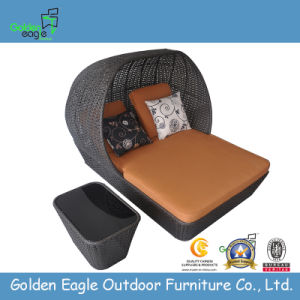 Luxury Rattan Outdoor Canopy Bed (TY0007) pictures & photos
