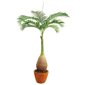 Artificial Bottle Trunk Palm Plants with Fiber Glass Pot