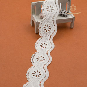 Hot Selling New Design Cotton Crochet Lace for Hometextiles pictures & photos