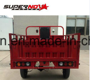 Brake gasoline Dumper Cargo Tricycle with Tube pictures & photos