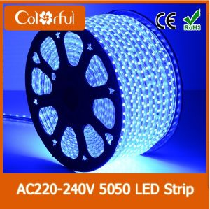Decoration 60LEDs/M AC220V Cheap SMD5050 LED Strip Light pictures & photos