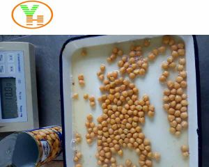 Where to Buy Chickpeas 800g  Canned  Chick  Peas  in Tomato Sauce pictures & photos