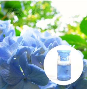 Gardenia Blue Powder