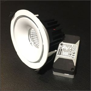 9W LED Down Light (PTD-211U)