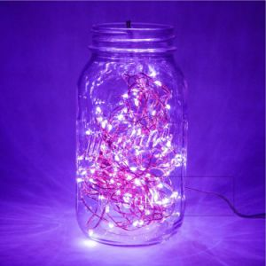 Purple 12V 50 LED String Lights 16.4FT Copper Wire Firefly Lights Remote Control USA Ca Plug pictures & photos