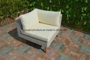 PE Rattan & Aluminum Furniture, Outdoor Garden Sofa (TG-6005) pictures & photos