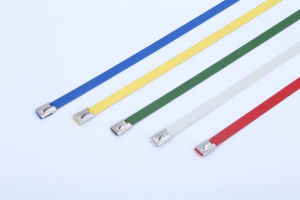 Colored Epoxy Polyester Coated Self Locking Stainless Steel Cable Ties pictures & photos