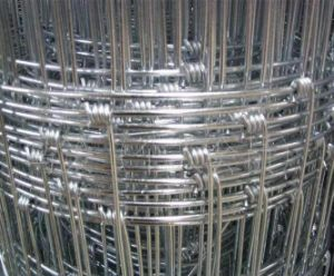 Sheep Wire / Cattle Mesh / Deer Fence pictures & photos