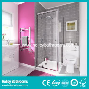 High Class Shower Hinged Door with Aluminium Alloy Frame (SE915C)