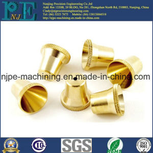 ISO9001 Certificated Factory OEM Brass Precision Machining Worm Gear pictures & photos