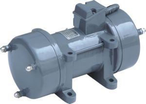 Concrete Plate Vibrator 0.75kw/1.1kw/1.5kw/2.2kw (ZW-70) pictures & photos