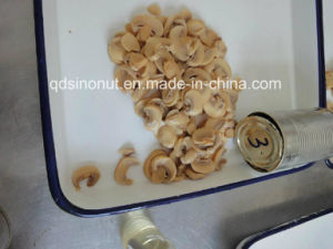 Mushroom Pns with High Quality, Nice Cut, Best Price (HACCP, ISO, BRC, FDA, HALAL, KOSHER) pictures & photos