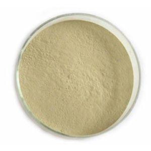 China High Quality Hesperidin Powder Citrus Aurantium Extract