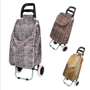 Foldable Shopping Trolley (XY-404C1) pictures & photos