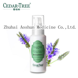 Natural & Pure Herbal Lavender Nourishing Water Essence Cream pictures & photos