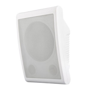 Wall Speaker Wall Mount Box Speaker (R102T) pictures & photos