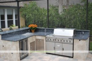 304 Stainless Steel Outdoor Kitchen with BBQ (WH-D666)