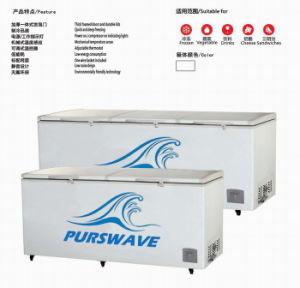 Purswave 1000L DC24V48V220V110V Solar Freezer Battery Powered Compressor Refrigerating pictures & photos