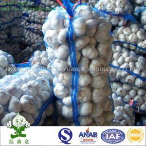 New Crop 2016 Fresh Pure White Garlic