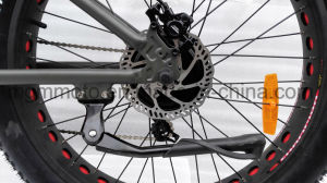 Harley Fat Tire Kenda 26inch Mountain Electric Bike pictures & photos