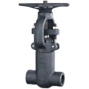 Pressure seal gate valve (PZ61Y-1500LB)