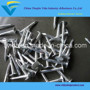Clout Roofing Nail From Factory with Best Prices pictures & photos