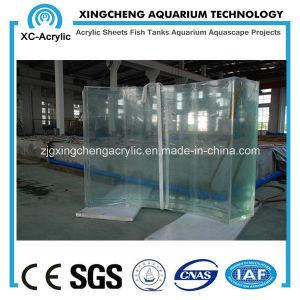Customized Shape Acrylic Aquarium/Fish Tank pictures & photos