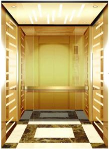 AC Vvvf Gearless Drive Passenger Elevator Without Machine Room (RLS-231) pictures & photos