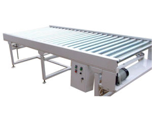 Roller Conveyor for Carton pictures & photos