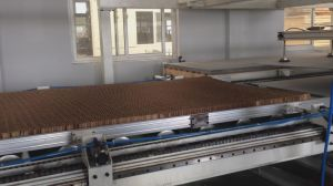 Honeycomb Wall Panel Lamination Line pictures & photos