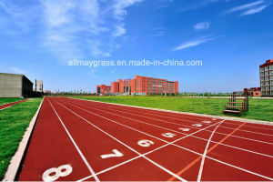 Polyurethane Runway/Tartan/Running Track for Sports Venues, Flooring pictures & photos
