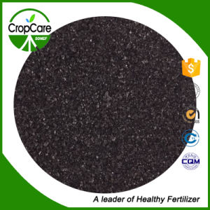 Manufacturers Organic Fertilizer Humic Acid pictures & photos