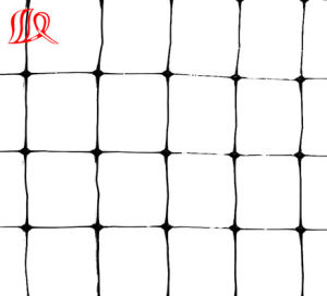 Transparent Extruded Plastic Netting/HDPE Anti Bird Net pictures & photos