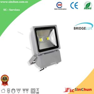 China Wholesale 100W Outdoor LED Flood Light (SA-PL-100W-SC1)