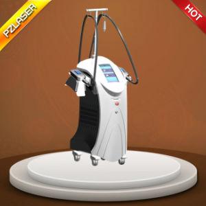 Best Quality Cryolipolysis Machine with Antifreeze Membrane
