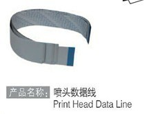 Original Print Head Data Line for Peizo Printer pictures & photos