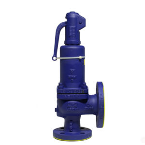 Safety Valve pictures & photos
