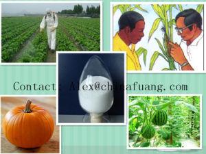 Agrochemicals Plant Bactericide 95% Tc CAS No: 99387-89-0 Triflumizole pictures & photos