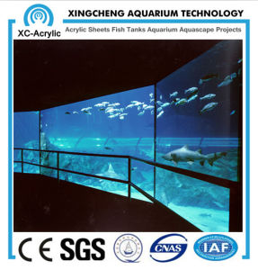 Super Clear Acrylic Panel Viewing of Acrylic Panel Aquarium pictures & photos