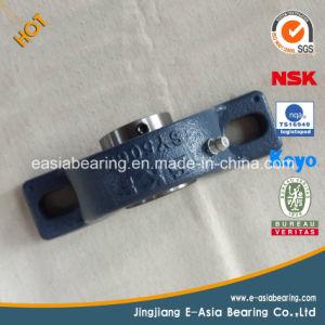 Asahi Fyh NTN NSK Brand Name Pillow Block Bearing Sizes pictures & photos