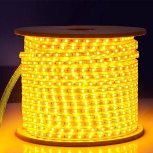 60LEDs/M 3528 LED Strip Light (G-SMD3528-60-34-5) pictures & photos