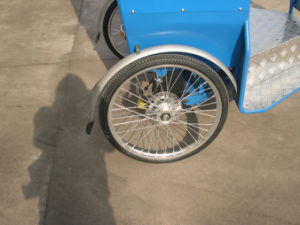 Two Function Pedal and Electric Power Rickshaw pictures & photos