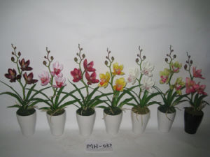 2012 Newest Style Cymbidium Faberi Small Artificial Flowers with Ceramics Pot Mh-037