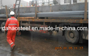 China Famous Rebar Manufacturer pictures & photos